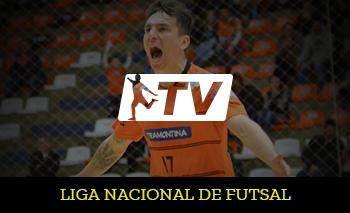 LNF TV